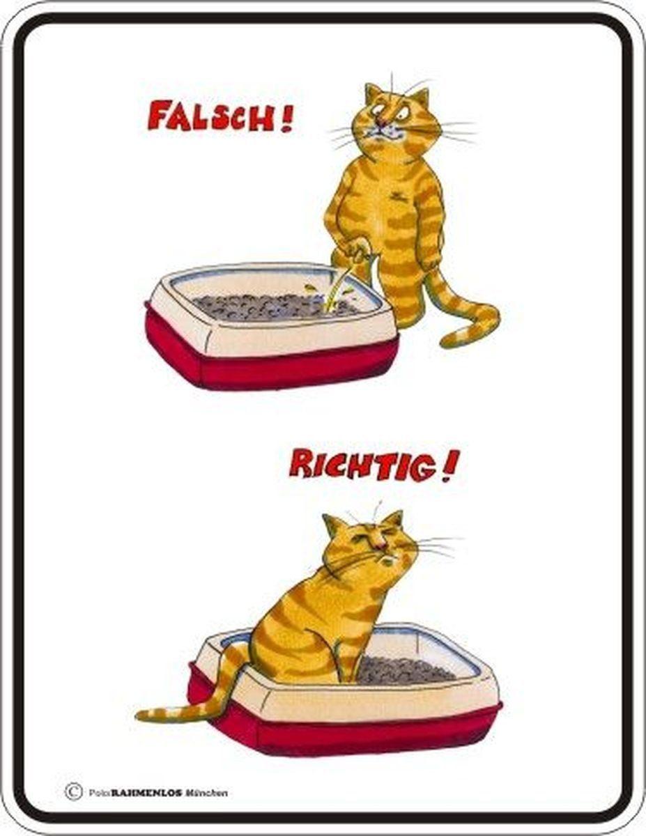 Rahmenlos Blechschild mit lustigem Katzenmotiv