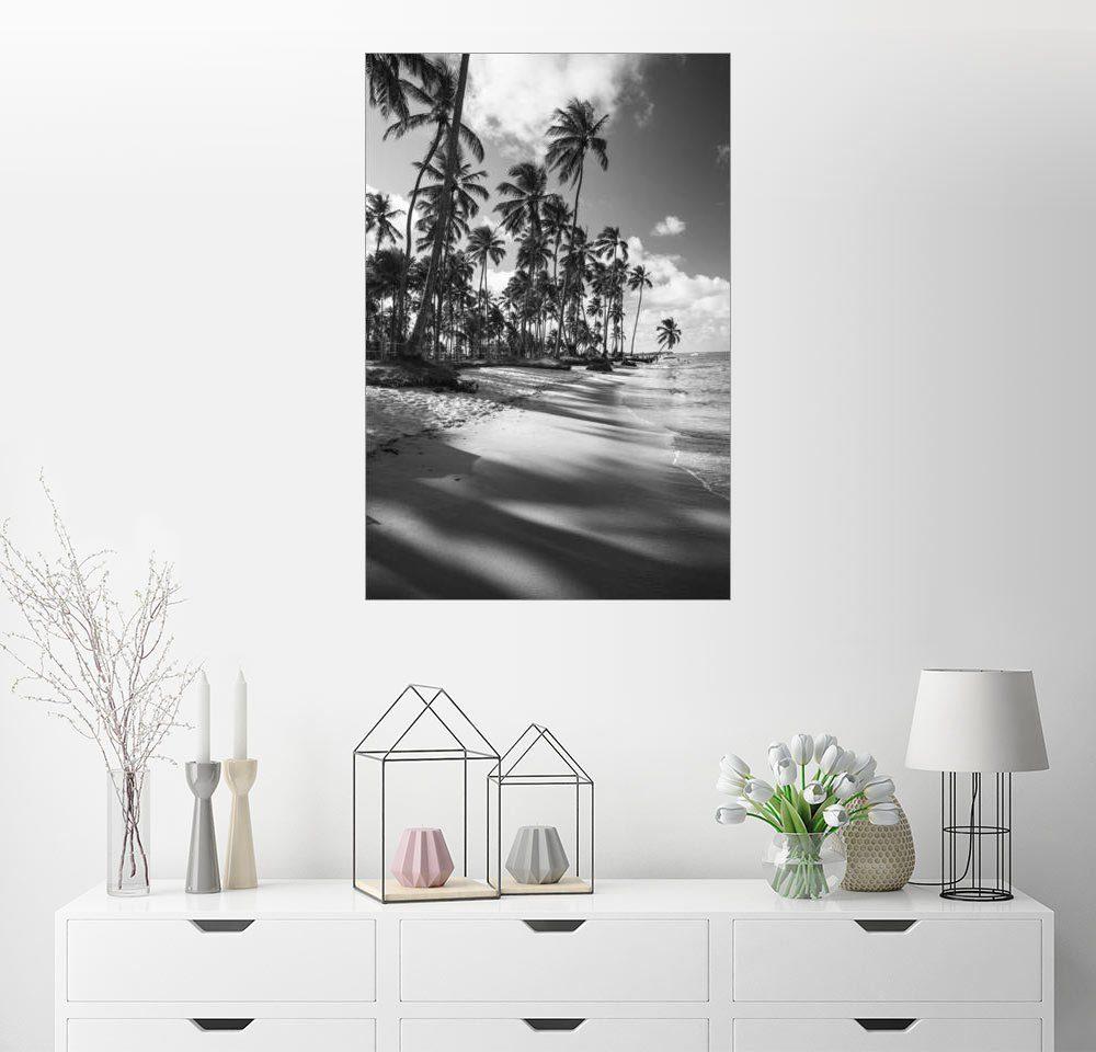 Posterlounge Wandbild - Alex Saberi »Tropische Palmen auf einem brasilianischen St...«