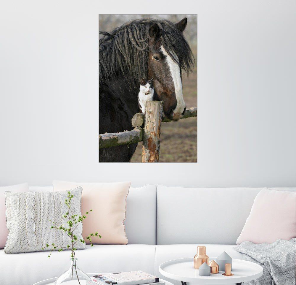 glanz-nachbildung Bilder online kaufen   Möbel-Suchmaschine ...