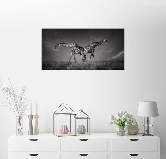 Posterlounge Wandbild - Carsten Meyerdierks »Double G«