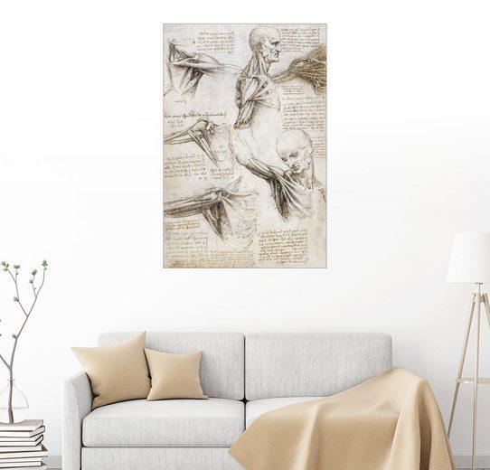 Posterlounge Wandbild - Leonardo da Vinci »Muskeln und Sehnen der Schulter und des Armes«