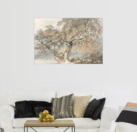 Posterlounge Wandbild - Joseph Mallord William Turner »Schöner Baum«