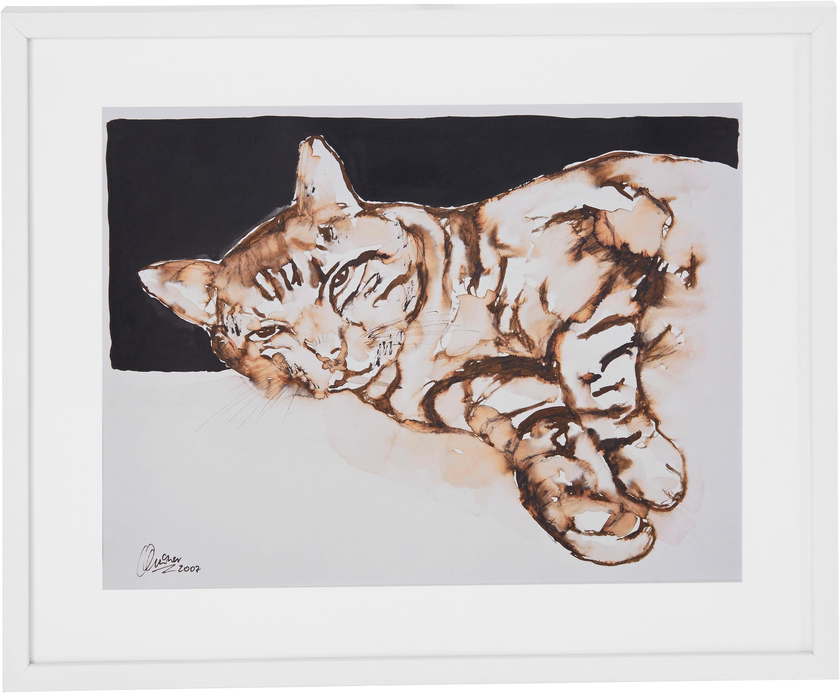 Guido Maria Kretschmer Home&Living Bild »Katze«, Katzen, von Frank Mutters