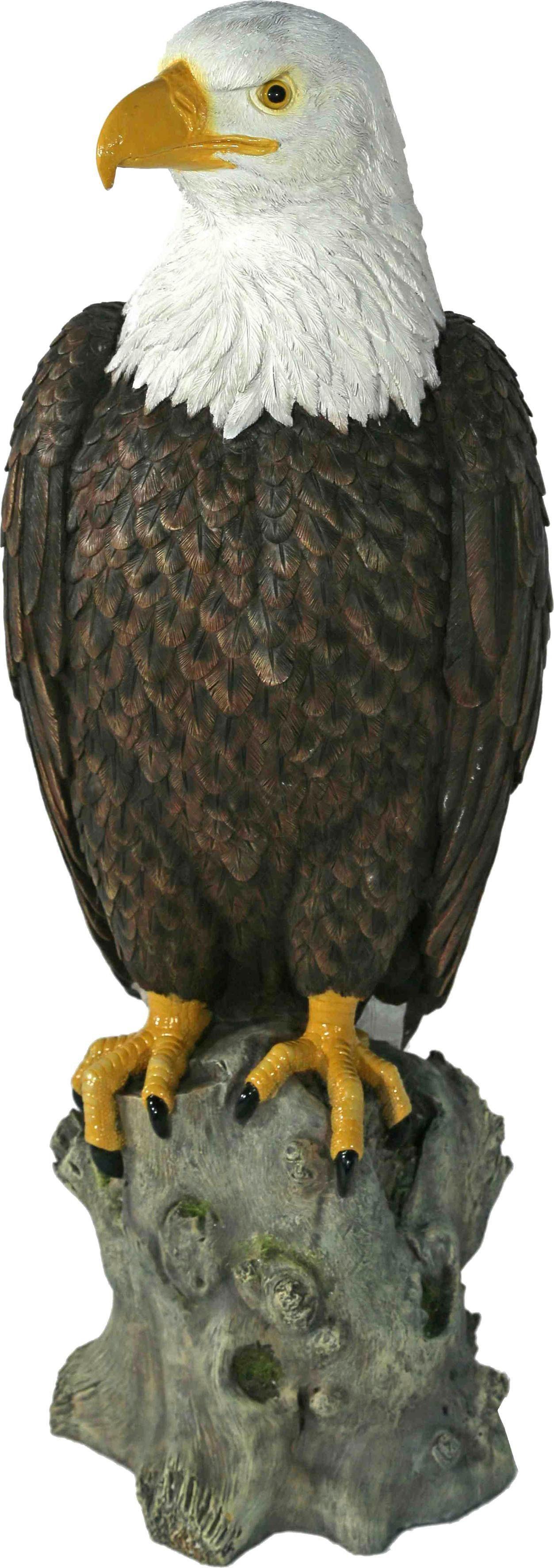 Home affaire Dekofigur »Adler auf Felsen sitzend«, Höhe 54 cm