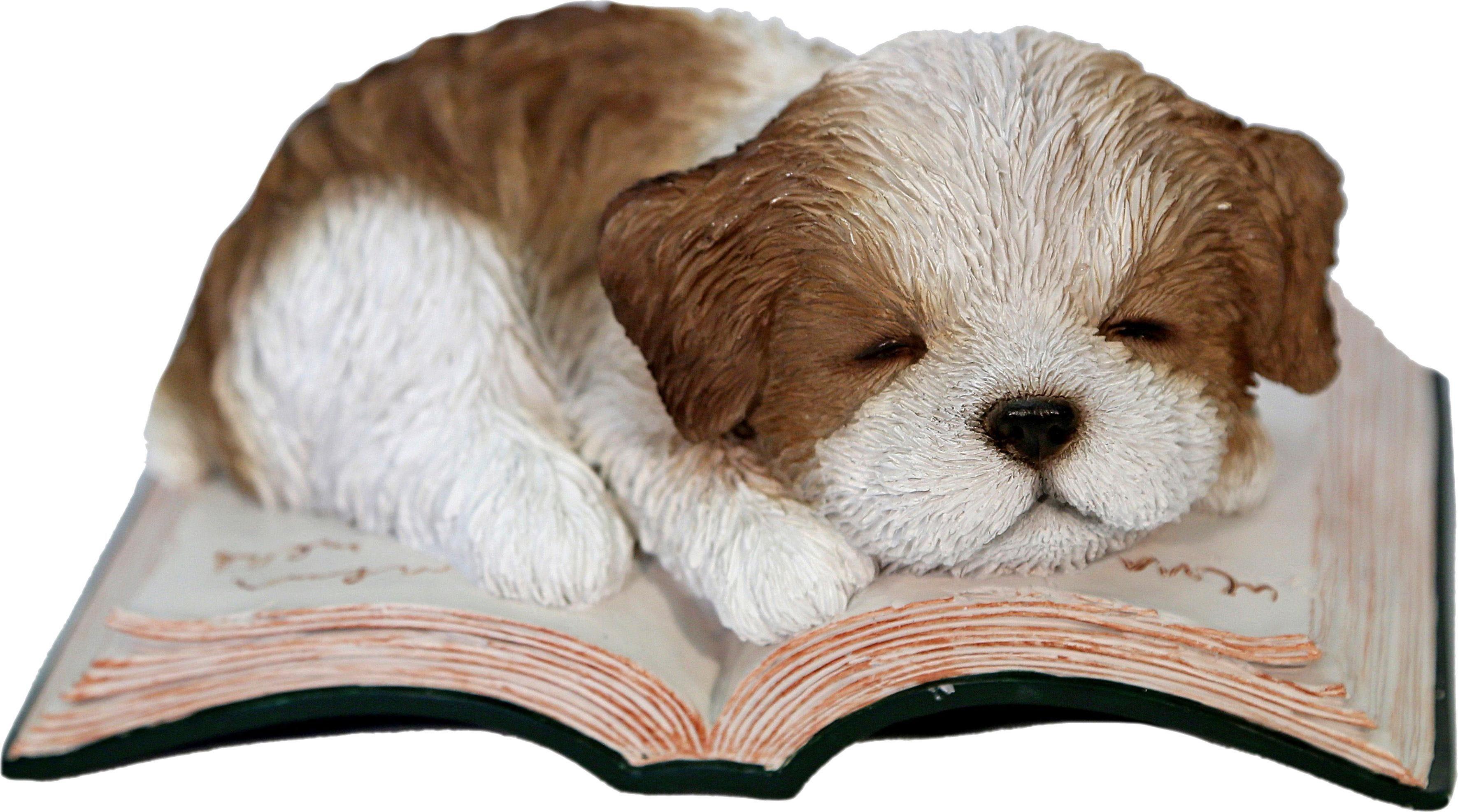 Home affaire Dekofigur »Hund schlafend auf Buch«