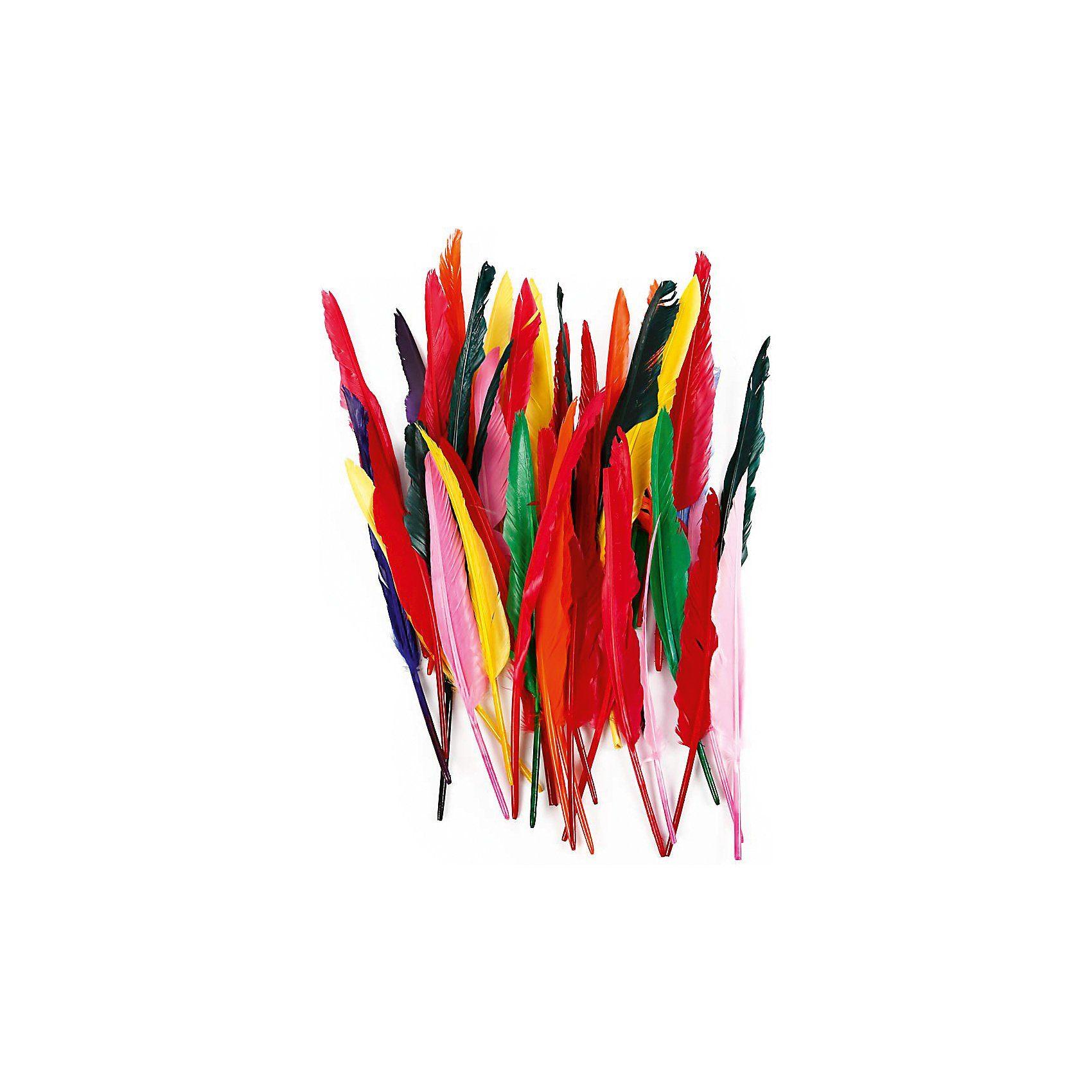 Federn, L: 29-31 cm, Sortierte Farben, Gans, 100 Stück sorti