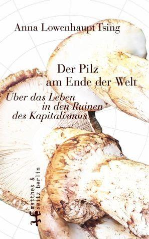 Gebundenes Buch »Der Pilz am Ende der Welt«