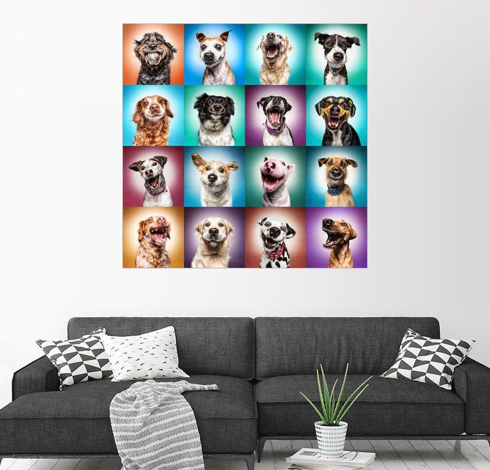 Posterlounge Wandbild - Manuela Kulpa »Noch mehr lustige Hundegesichter«
