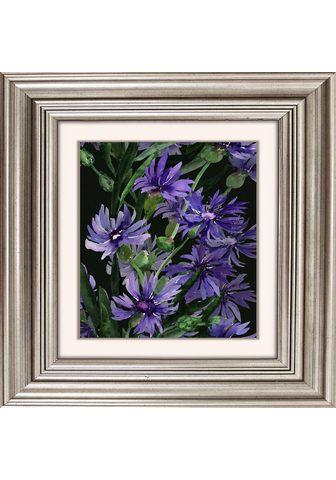 Paveikslas »Lila Blüten«