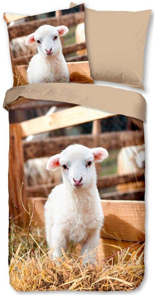 Kinderbettwasche Lamb Good Morning Mit Lammchen Online Kaufen Otto