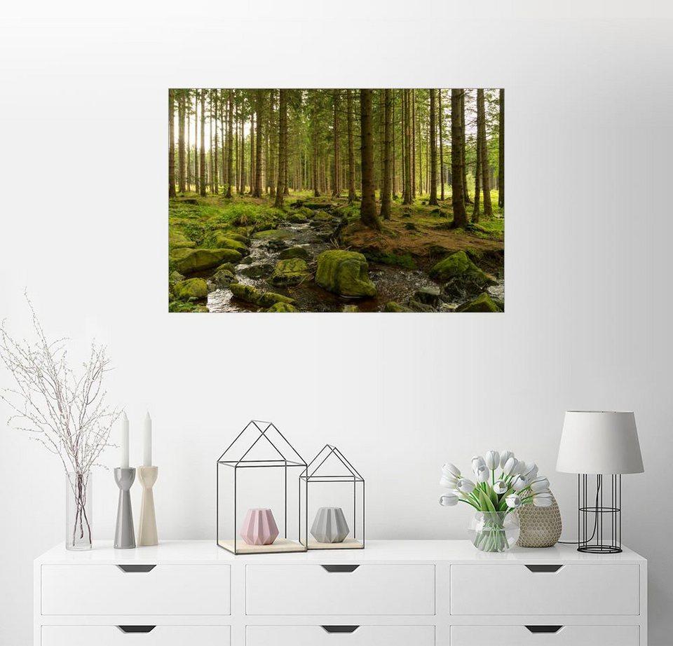 Oliver Henze »Wald Mit Bachlauf