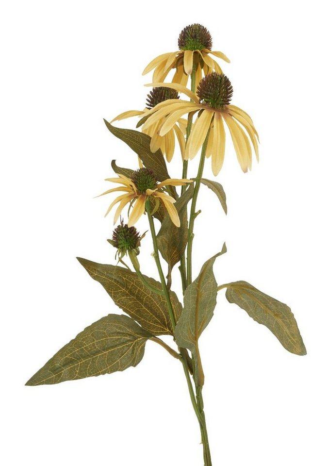 VBS Sonnenhut Einzelstiel 74 cm Gelb online kaufen