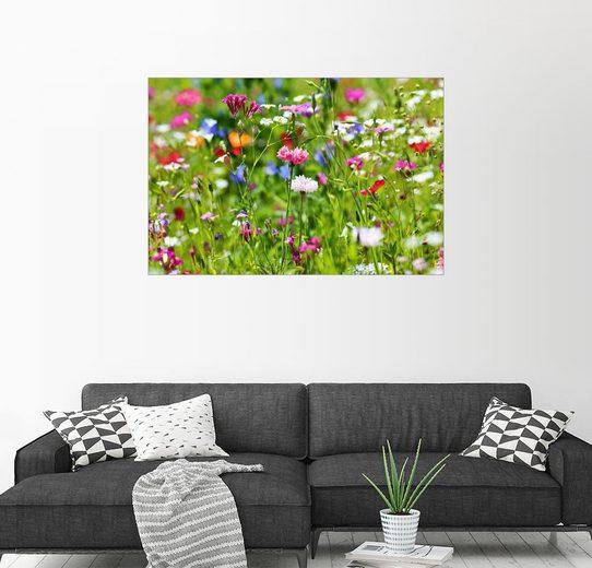 Posterlounge Wandbild - fotoping »Blumenwiese«