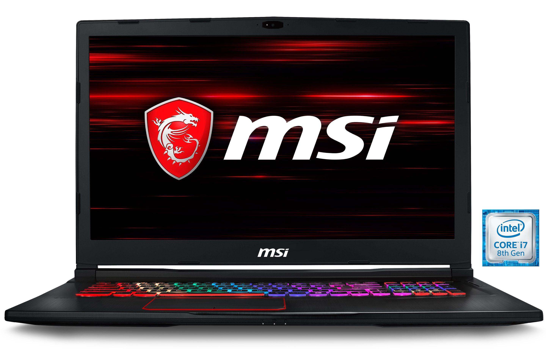 """MSI 17,3"""" Intel® i7-8750H 16GB SSD + HDD GeForce® GTX 1070 »GE73 8RF-009DE (0017C5-009)«"""