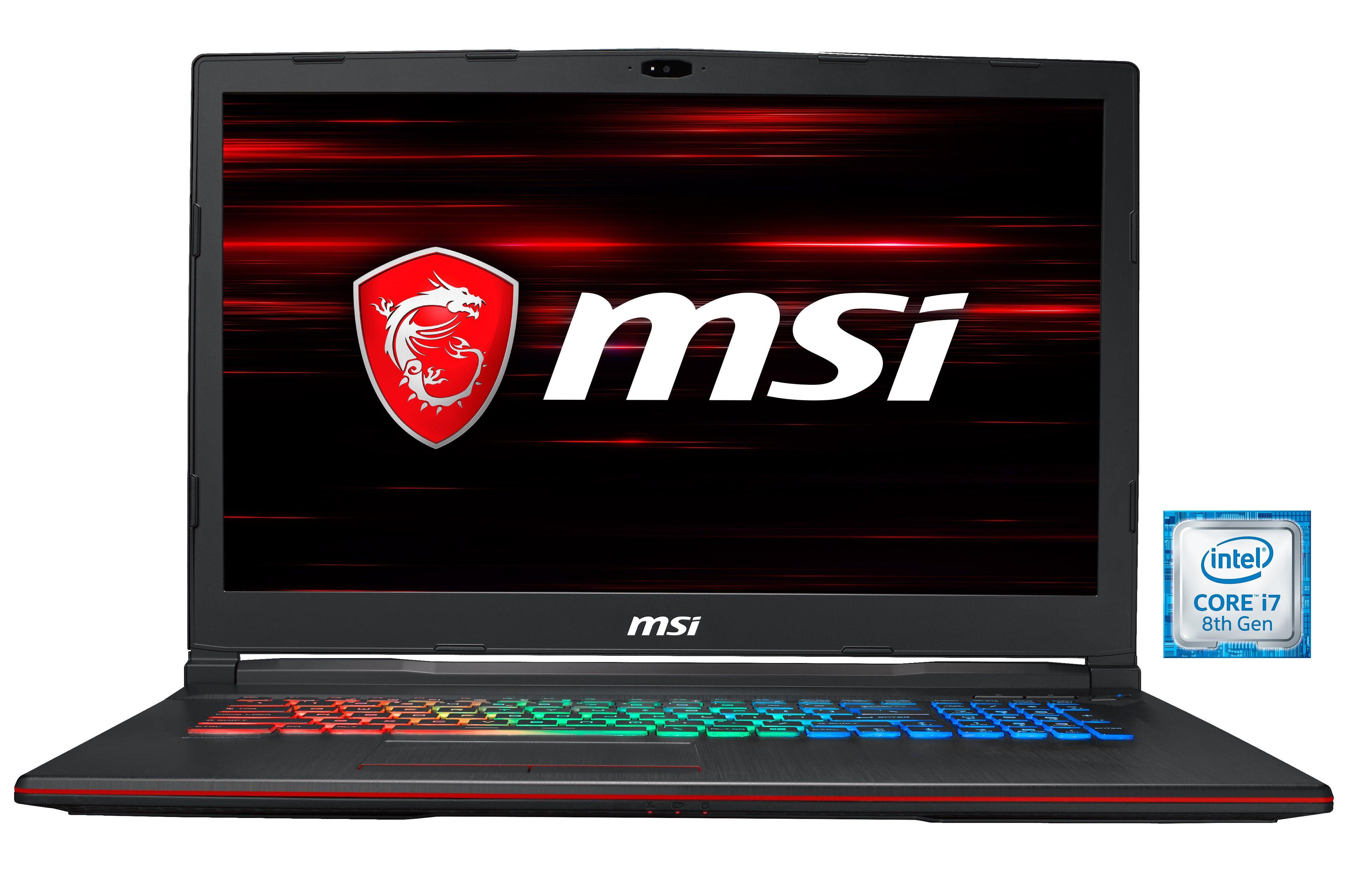 "MSI 17,3"" FHD, i7-8750H, 16GB, SSD + HDD, GeForce® GTX 1060 »GP73 8RE-041DE (0017C5-041)«"