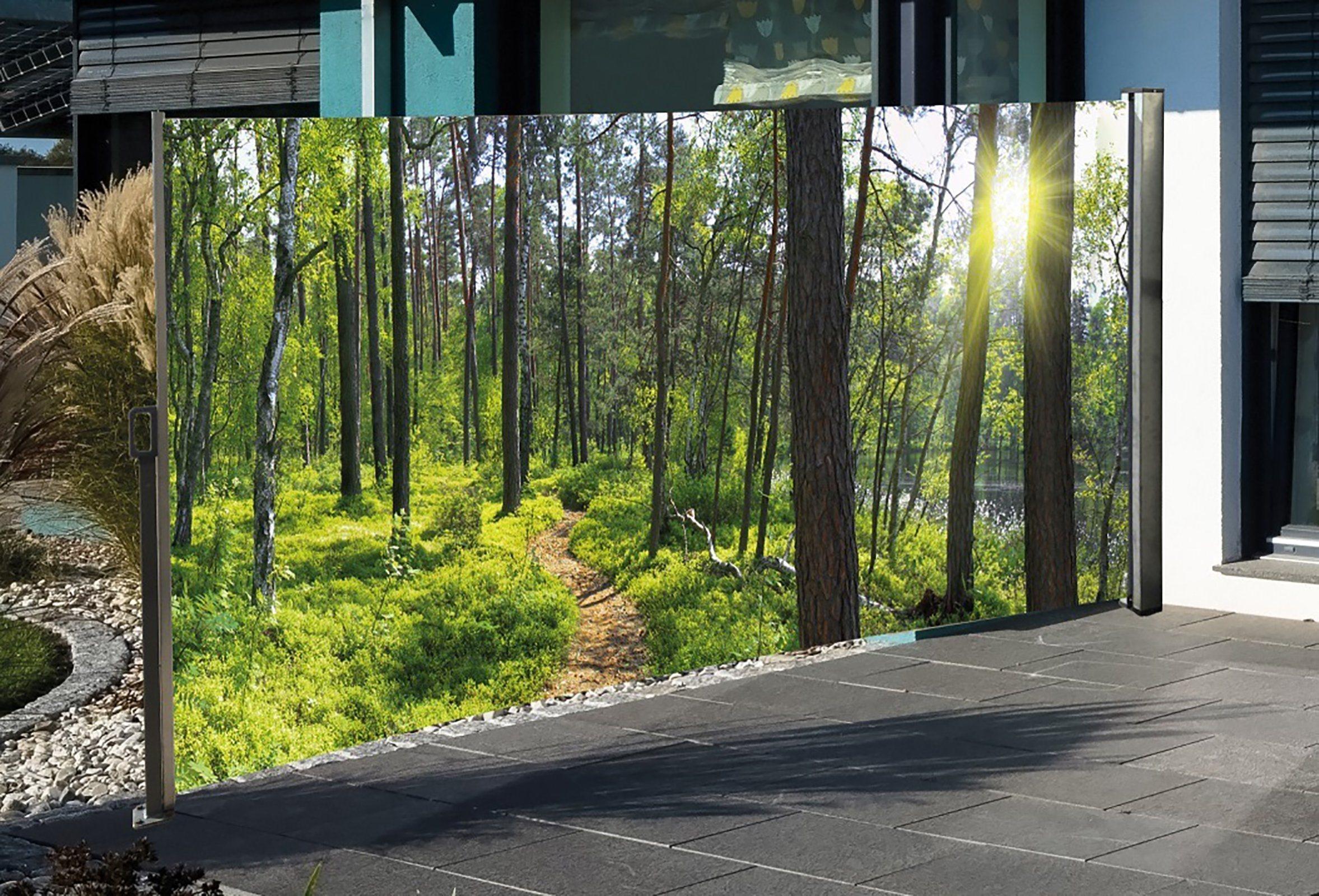 HTI Living Seitenmarkise Mit Fotodruck »Wald«