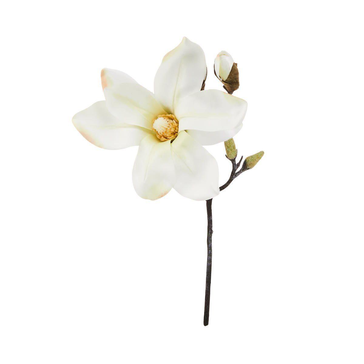 BUTLERS FLORISTA »Magnolie 33 cm«
