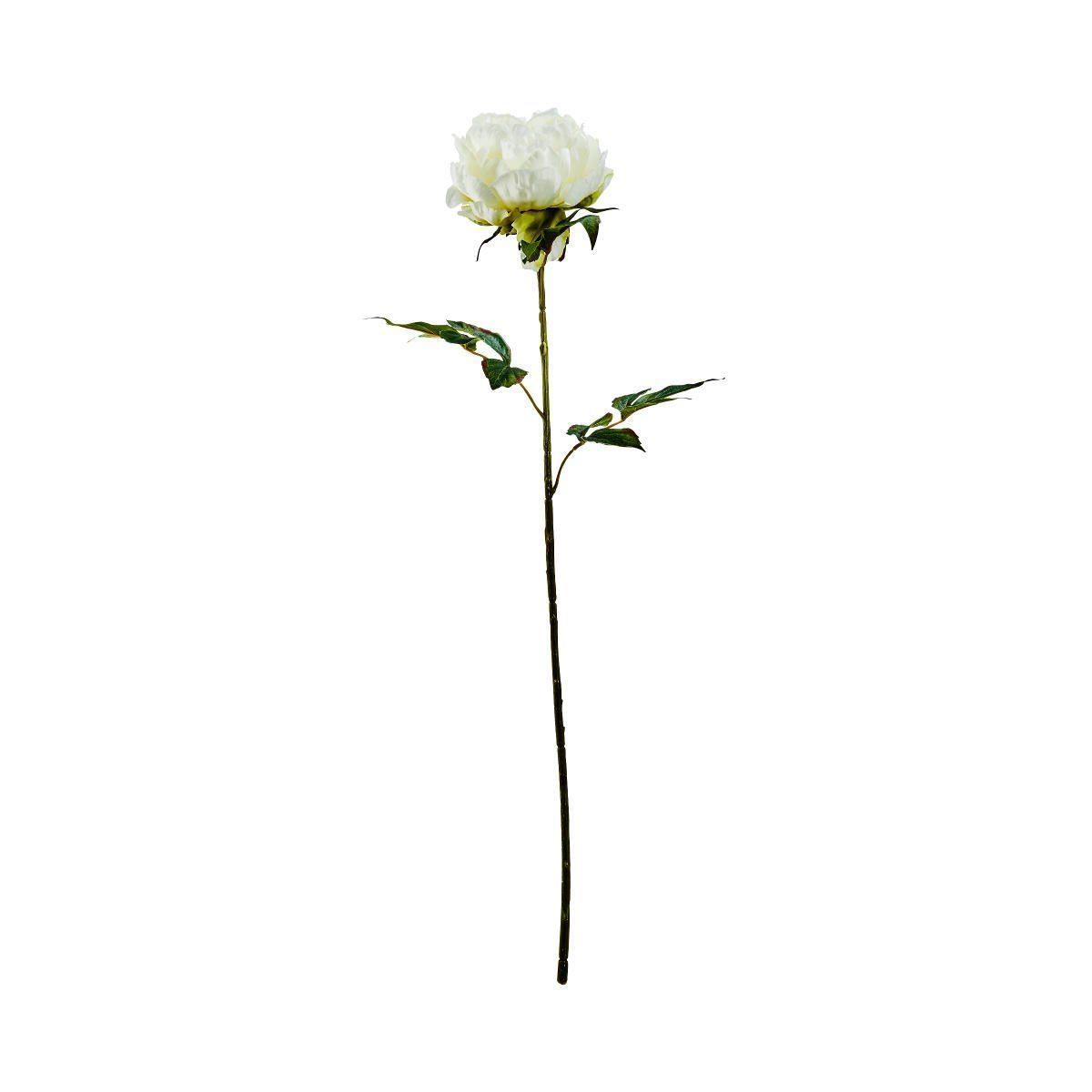 BUTLERS FLORISTA »Pfingstrose 75 cm«
