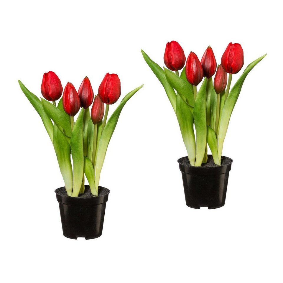 tulpen im topf x 5 2er set t uschend echt aussehende bl ten bl tter und erde online kaufen. Black Bedroom Furniture Sets. Home Design Ideas
