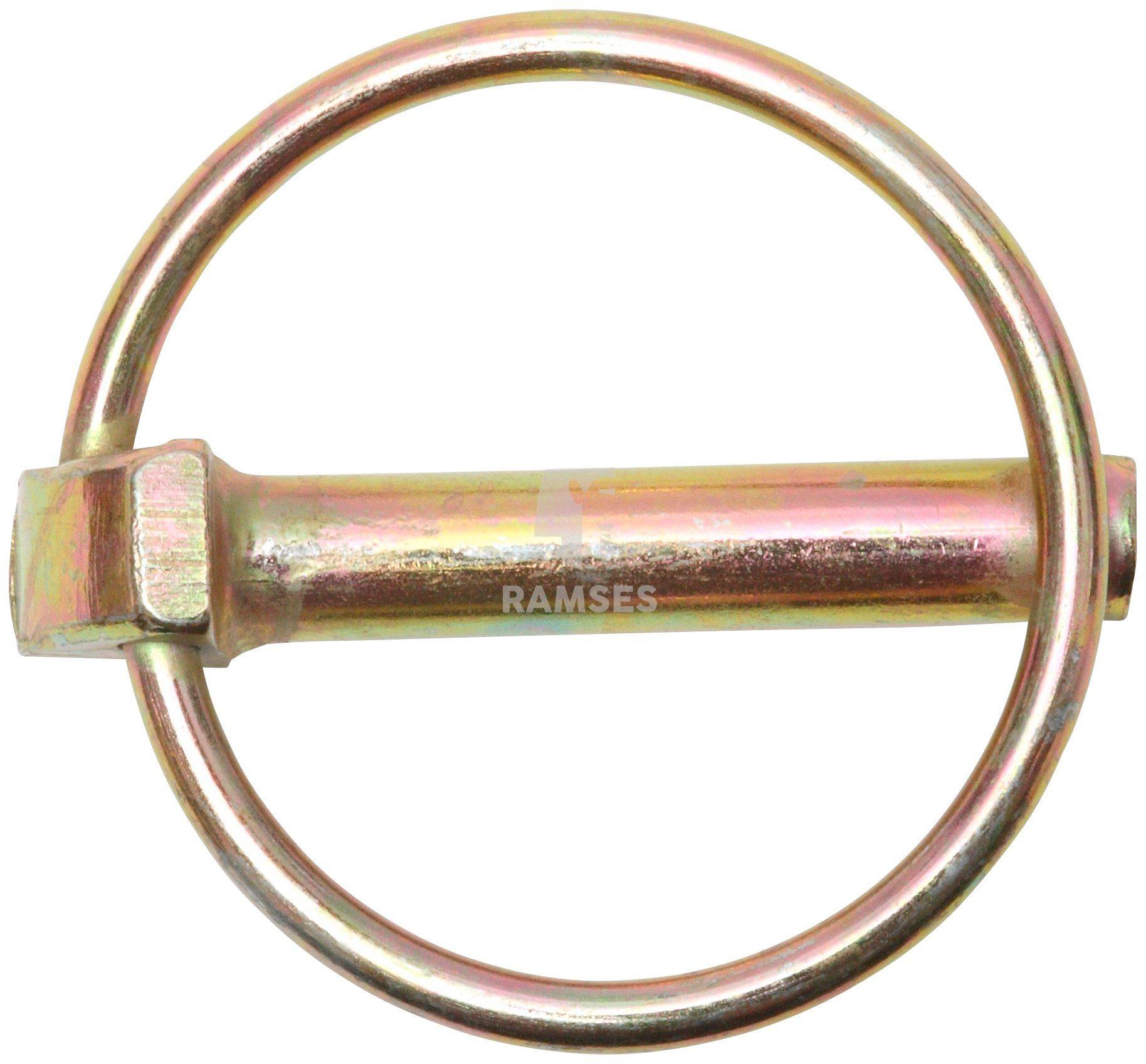 RAMSES Klappstecker , mit Schaft 11 x 42 mm Stahl verzinkt 10 Stück