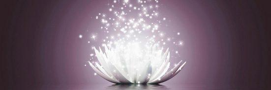 Premium collection by Home affaire Bild »V. Georgiev: Magie der Lotus-Blume«