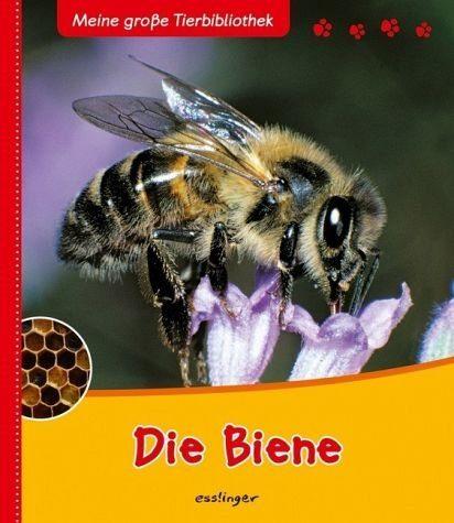 Gebundenes Buch »Die Biene / Meine große Tierbibliothek«