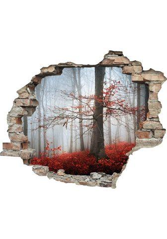 queence Wandtattoo »Wald im Herbst« (1 vieneta...
