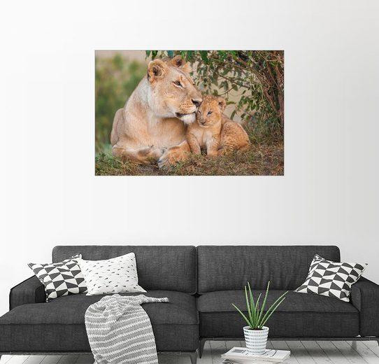 Posterlounge Wandbild - Ingo Gerlach »Mutterliebe bei den Löwen«
