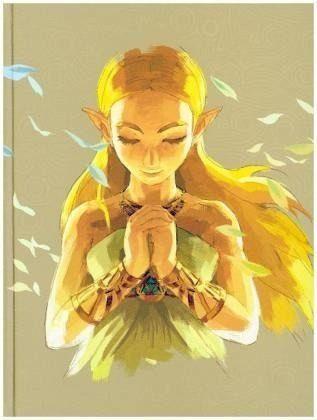 Gebundenes Buch »The Legend of Zelda: Breath of the Wild. Das...«