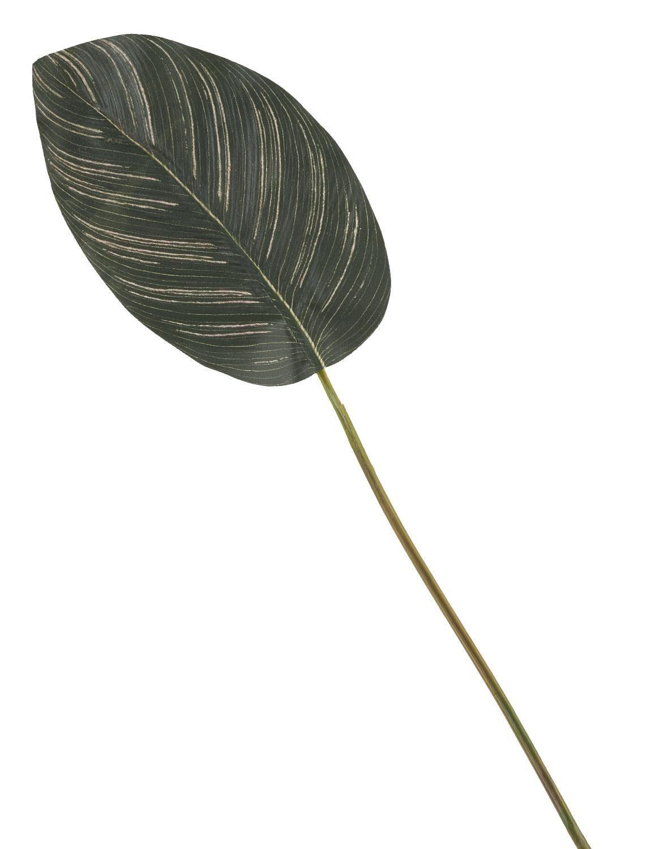 """Kunstblatt """"Calathea Einzelstiel"""" 59 cm lang"""