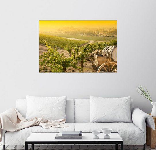 Posterlounge Wandbild »Weinberg zur Weinlese«