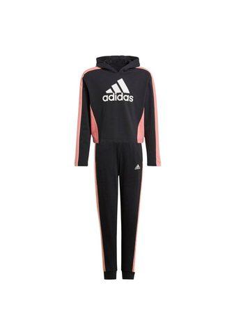 adidas Performance Sportinis kostiumas »COLORBLOCK CROP T...