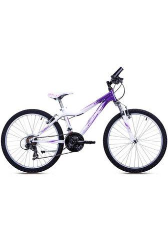 BERGSTEIGER Kalnų dviratis »Verona« 18 Gang Shiman...