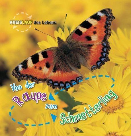 Gebundenes Buch »Von der Raupe zum Schmetterling. Kreislauf des...«