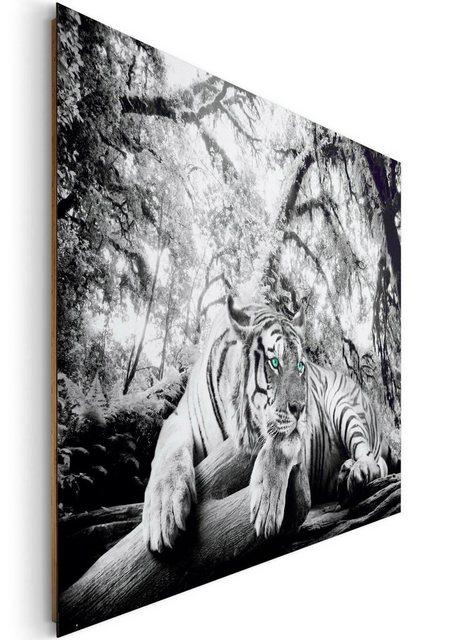 Home affaire Deco-Panel »Tiger guckt dich an«   Dekoration > Bilder und Rahmen > Bilder   home affaire