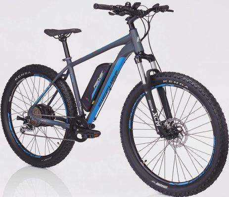 Fischer Fahrräder E-Bike »EM 1725«, 9 Gang Shimano XT Schaltwerk, Kettenschaltung, Heckmotor 250 W