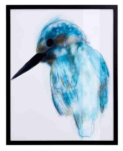 GMK Home & Living Bild »Eisvogel« mit schwarzem Rahmen