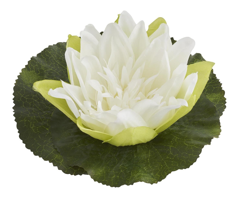 Seerose, schwimmend, ca. Ø 18 cm, Creme