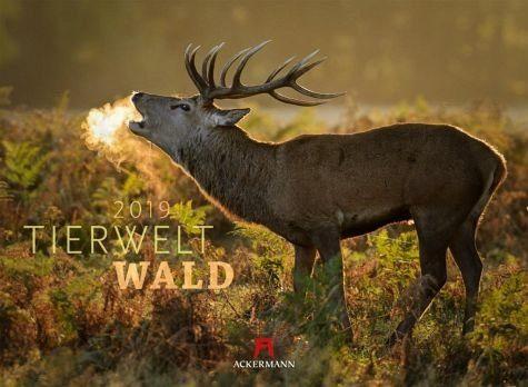 Kalender »Tierwelt Wald 2019«