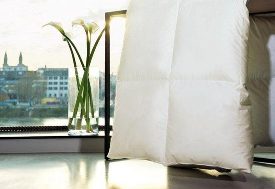 Gänsedaunenbettdecke, »Harmony«, Centa-Star, warm, Füllung: 100% Gänsedaunen, Bezug: 100% Baumwolle, (1-tlg)