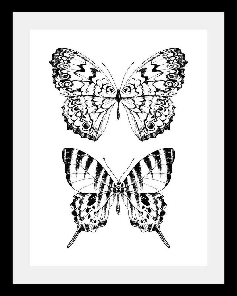 Bild mit Rahmen »2er Schmetterlinge« in 3 Größen | OTTO