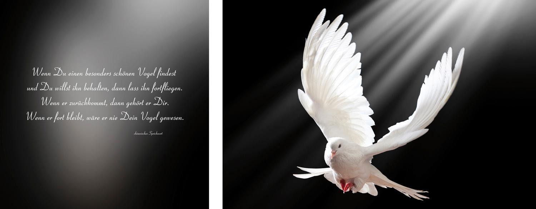 Leinwandbild »Vogel« 2er-Set