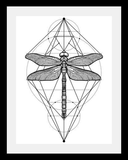 Bild »Libelle«, in 3 Größen, gerahmt