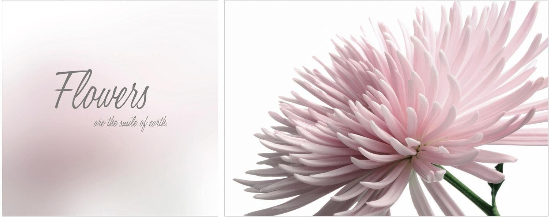 Leinwandbild »Flowers«, (Set, 2 Stück), 2er-Set