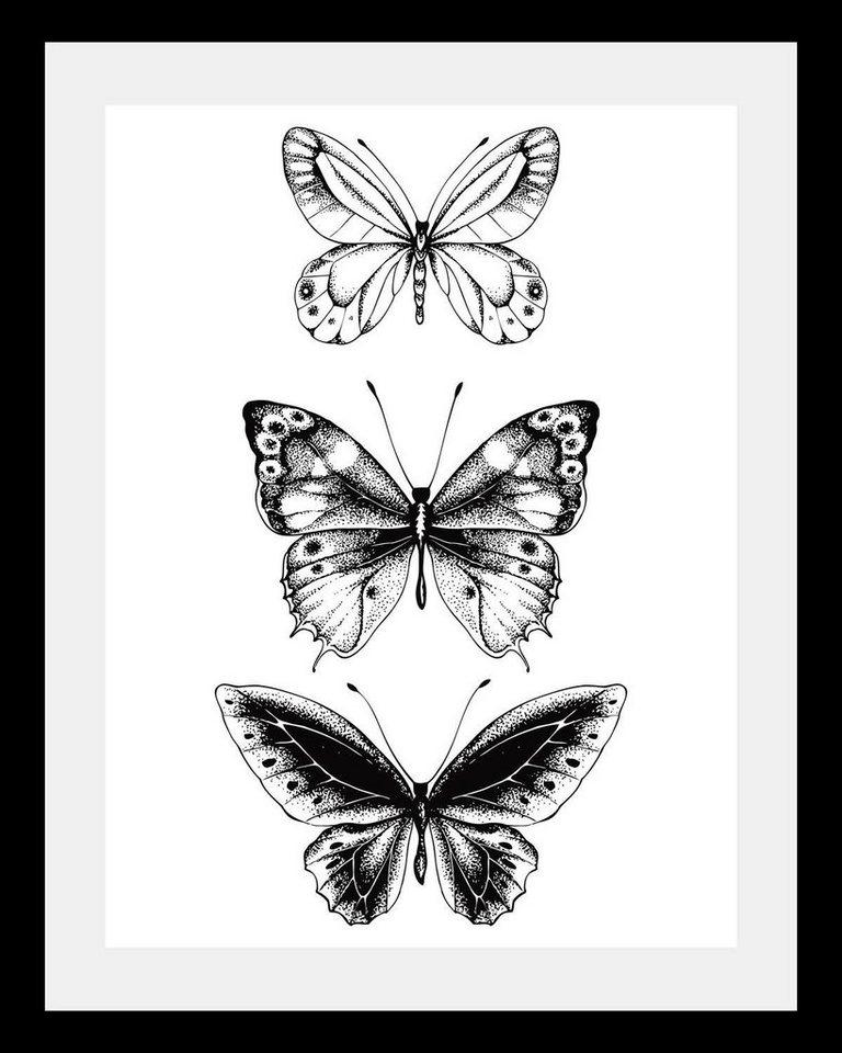 Bild mit Rahmen »3er Schmetterlinge« in 3 Größen | OTTO