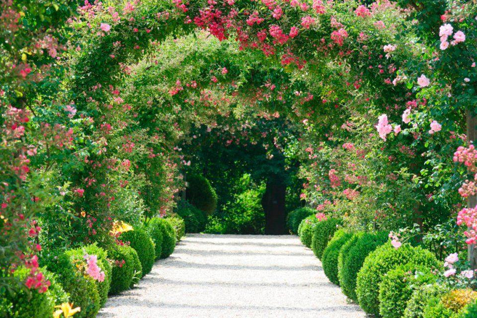 PAPERMOON Fototapete »Rose Arch Garden«, Vlies, 7 Bahnen, 350 x 260 cm