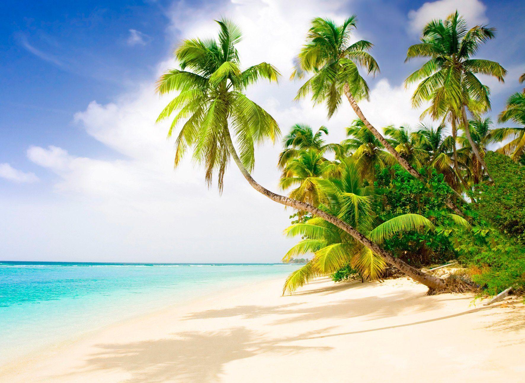 PAPERMOON Fototapete »Beach in the South Seas«, Vlies, 7 Bahnen, 350 x 260 cm