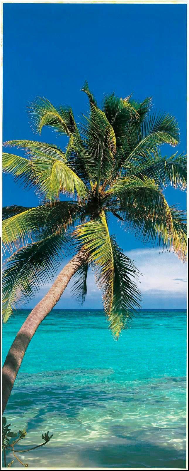 PAPERMOON Fototapete »Palm Tree - Türtapete«, Vlies, 2 Bahnen, 90 x 200 cm