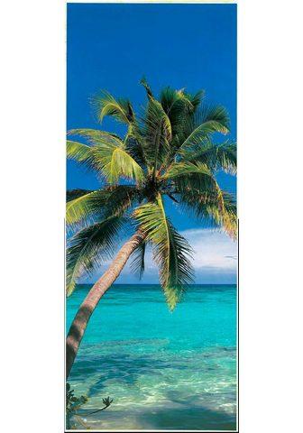 PAPERMOON Fototapetas »Palm Tree - Türtapete« Vl...