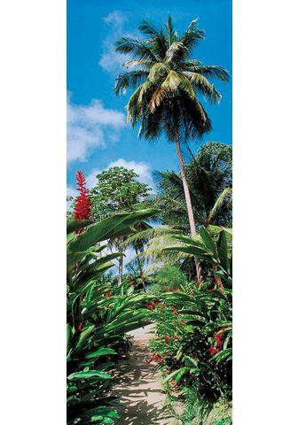 PAPERMOON Fototapetas »Palm Path - Türtapete« Vl...
